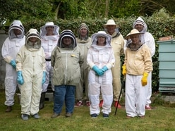Pride of Guernsey: Guernsey Beekeepers' Association