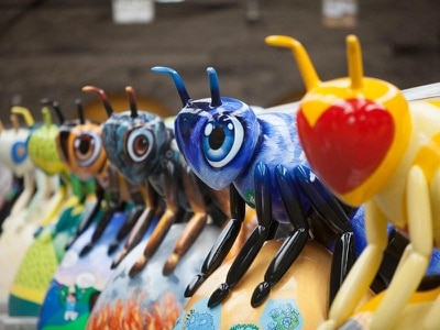 Bee In The City trail creates buzz