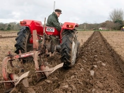 Ploughing contest calls for uniform furrows