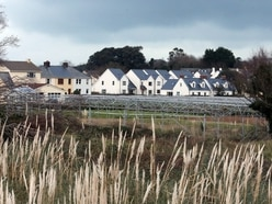 Up to 35 homes could be built at Vale vinery