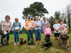 Wag's 10 parish, 10 walks in 10 weeks fundraiser returns