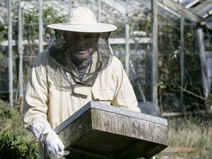 Pic by Adrian Miller Les Adams St Peter's Mike Collins beekeeper. Story is about avoiding pesticides and herbicides as they are killing off bees. (29435803)