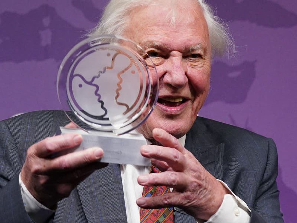 There is 'some hope' world can tackle problems, Sir David Attenborough says