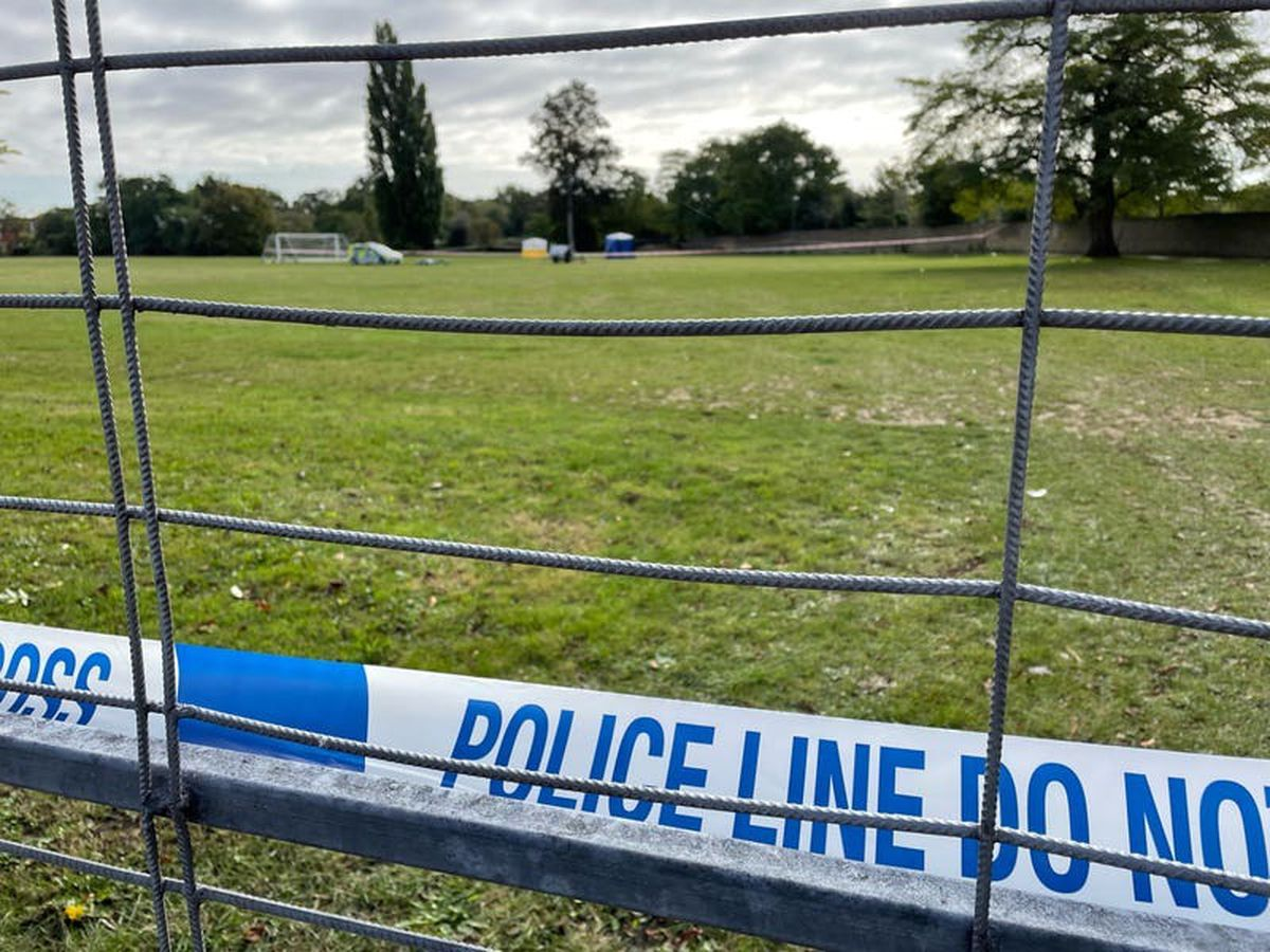 Teenager stabbed to death on Twickenham playing field named