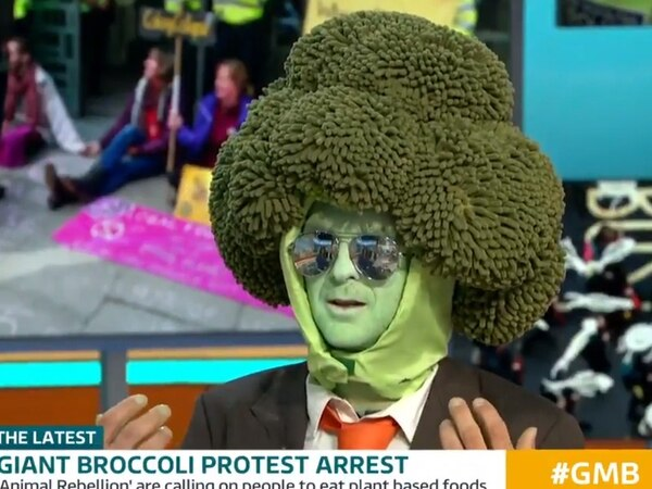 Piers and Susanna boil over as 'Mr Broccoli' protester given TV grilling