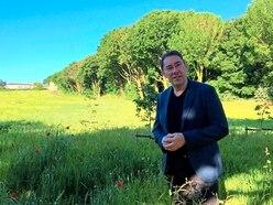 Belvedere poppies a poignant symbol
