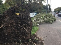 Thousands still without power and water in wake of Storm Ophelia