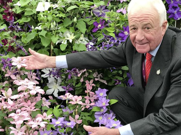 Raymond Evison and his clematis display at the delayed Chelsea Flower Show 2021. (Picture By Bruce Parker, 30004888)