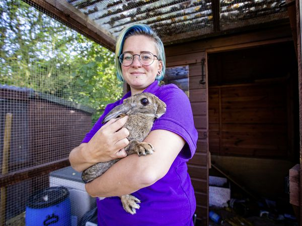Nicolle Morgan, GSPCA head of rabbits with Jemima, one of those in its care. Today is International Rabbit Day. (Picture by Sophie Rabey, 30021357)