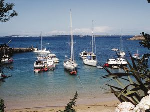 Boats moored in Herm Harbour. (26122564)