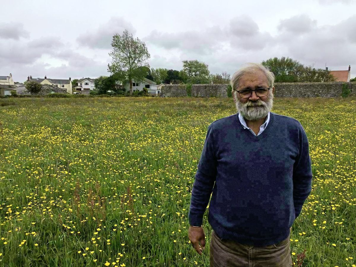 Mike Brown in one of the fields he has bought in a one-man campaign to protect biodiversity. (Picture by Simon De La Rue, 29592301)