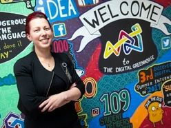 Digital Greenhouse to nurture new business with Startup Hub