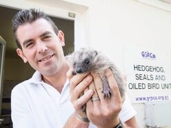 'Give hedgehogs a helping hand during this challenging season'