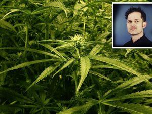Dr Harry Sumnall, professor of substance use at Liverpool John Moores university thinks that Britain has little to no regulation on CBD products, Guernsey is subject to more stringent regulation. (26611606)