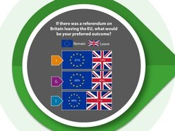 60% of Guernsey residents want Britain to remain - Brexit Survey