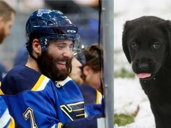 NHL offers awards for best ice hockey dogs of the year