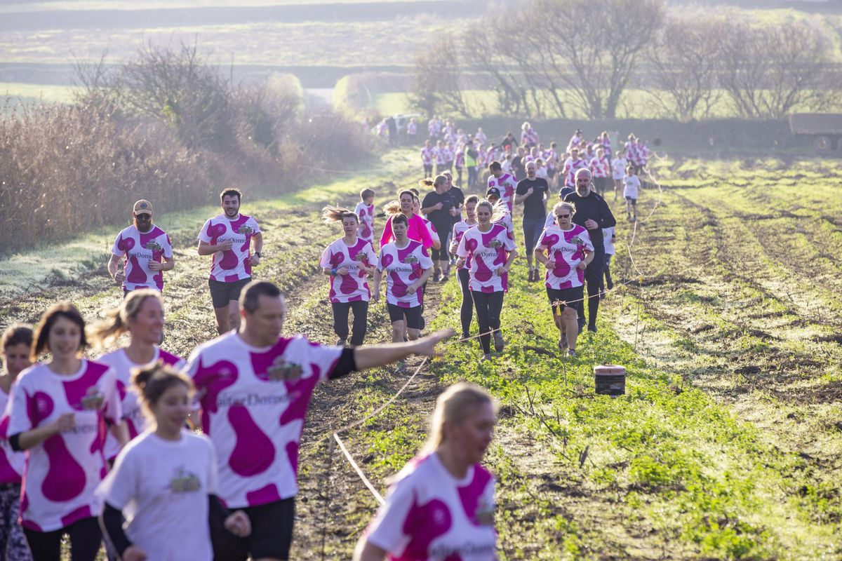 Picture by Sophie Rabey.  29-11-20. Muddy Cow Fun Run Vazon/Grande Mare. (28962996)