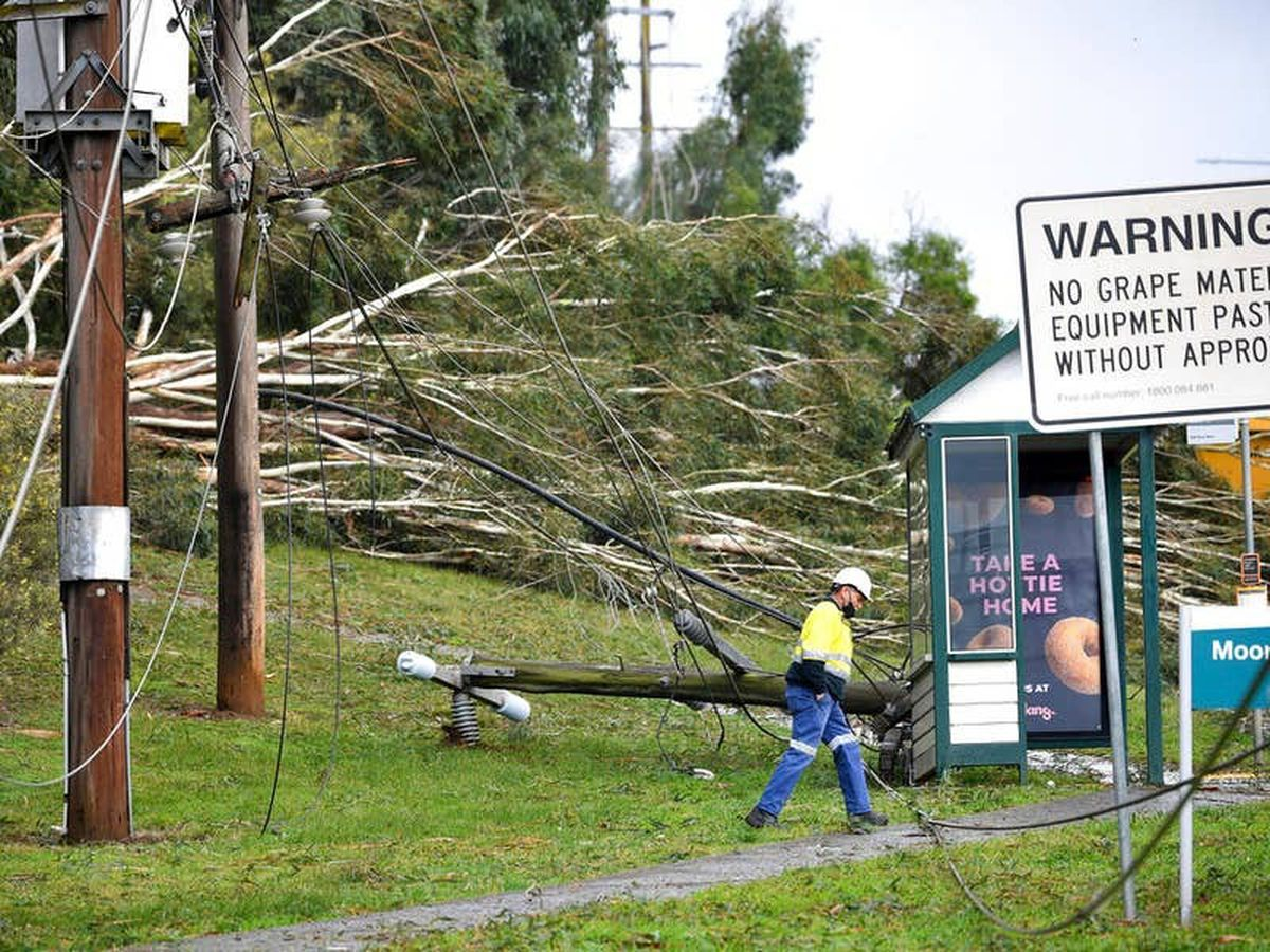 Thousands call for help as wild weather topples trees across Australian state