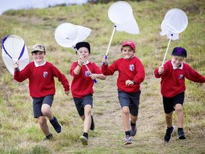 Picture By Peter Frankland. 15-09-21 BioBlitz at Lihou Headland. Organised by The Pollinator Project the 'Blitz' aims to educate children and collect date for scientific research. L-R - Fergus Campbell, Jude Tetlow, Aiden Ozanne and Ben Gibson. All are 9yrs old. (29990079)