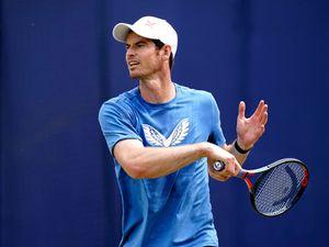 Andy Murray beaten by Diego Schwartzman in Antwerp