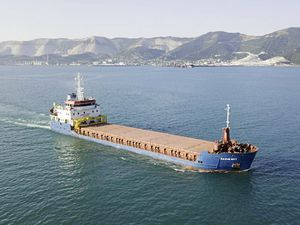 The MV Trinity, carrying her previous name of Nazim Bey, pictured by Anatoliy Sin at Novorossiysk in the Black Sea.