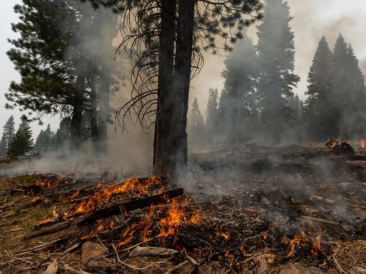 States lend support as wildfires blast through western US