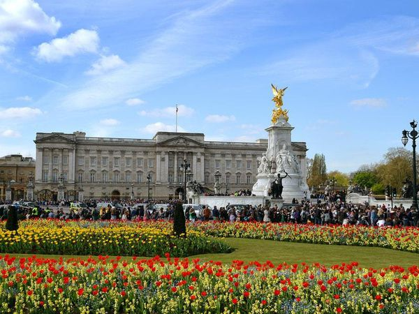 Catering assistant admits stealing medals and photos from Buckingham Palace