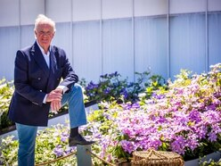Clematis intended for Chelsea show raise £7,500 for island charities