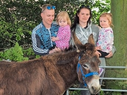 No room in the car parks at Donkey Day