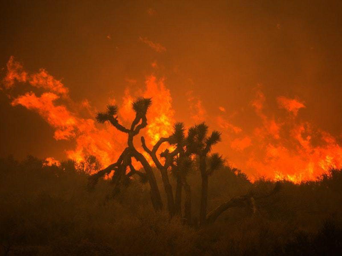 Huge California wildfire threatens desert homes near LA