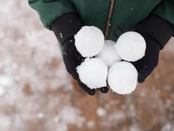 Snowball fight called off because of snow