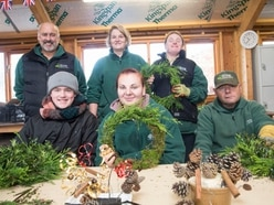 Grow Ltd team busy getting ready for Christmas Fayre