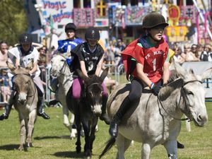 The halcyon days of the Donkey Derby a decade ago. The fundraising event has been cancelled for the second year in a row after the Lions Club, which organises it, decided to play safe because the donkeys and their grooms would have to come from the UK. (29843075)