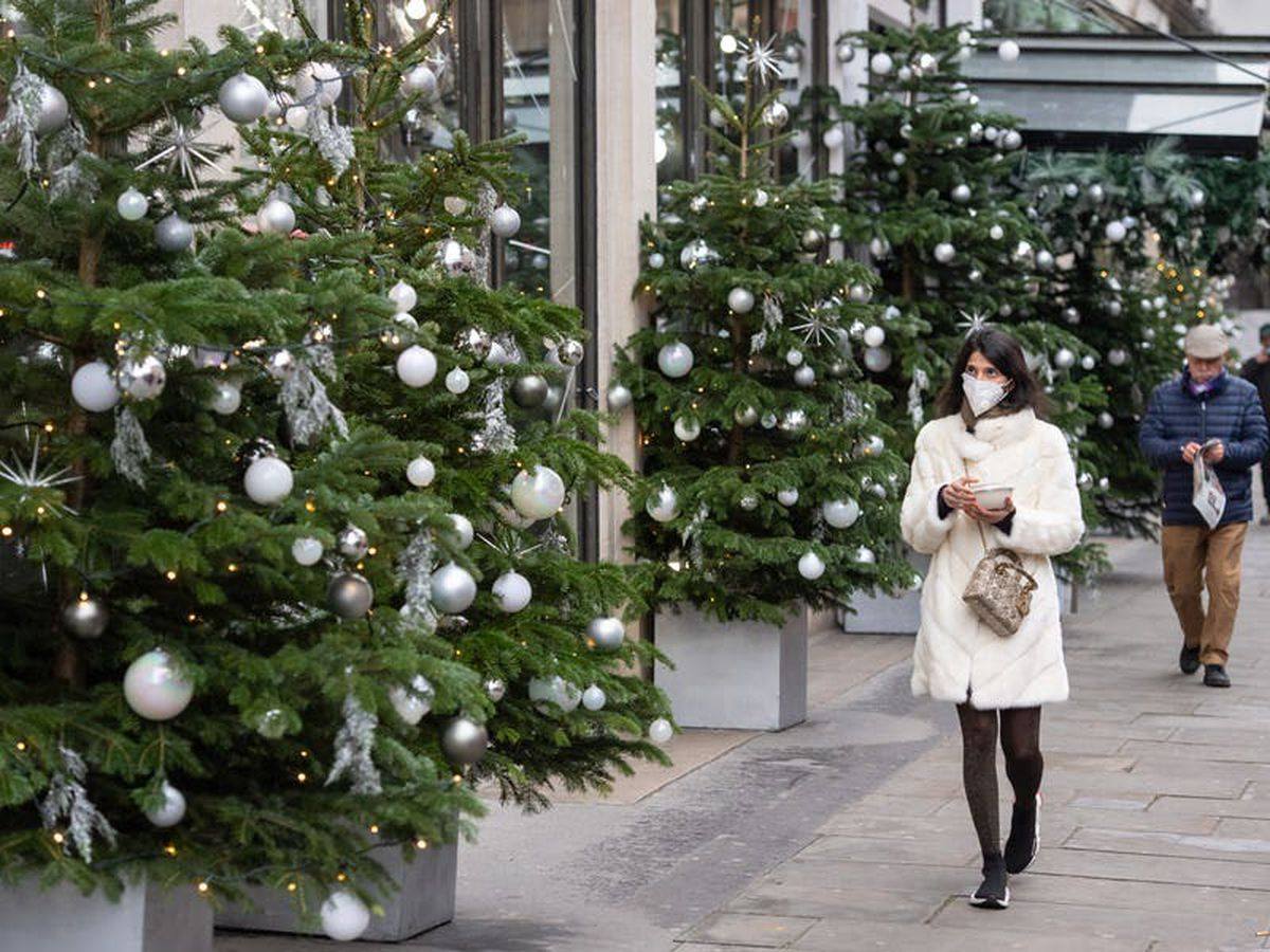 Retailers warn of potential Christmas tree shortage