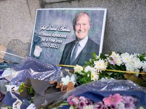 Man accused over Sir David Amess death could face trial in March