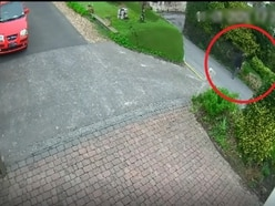 WATCH: CCTV footage of missing person released by Police