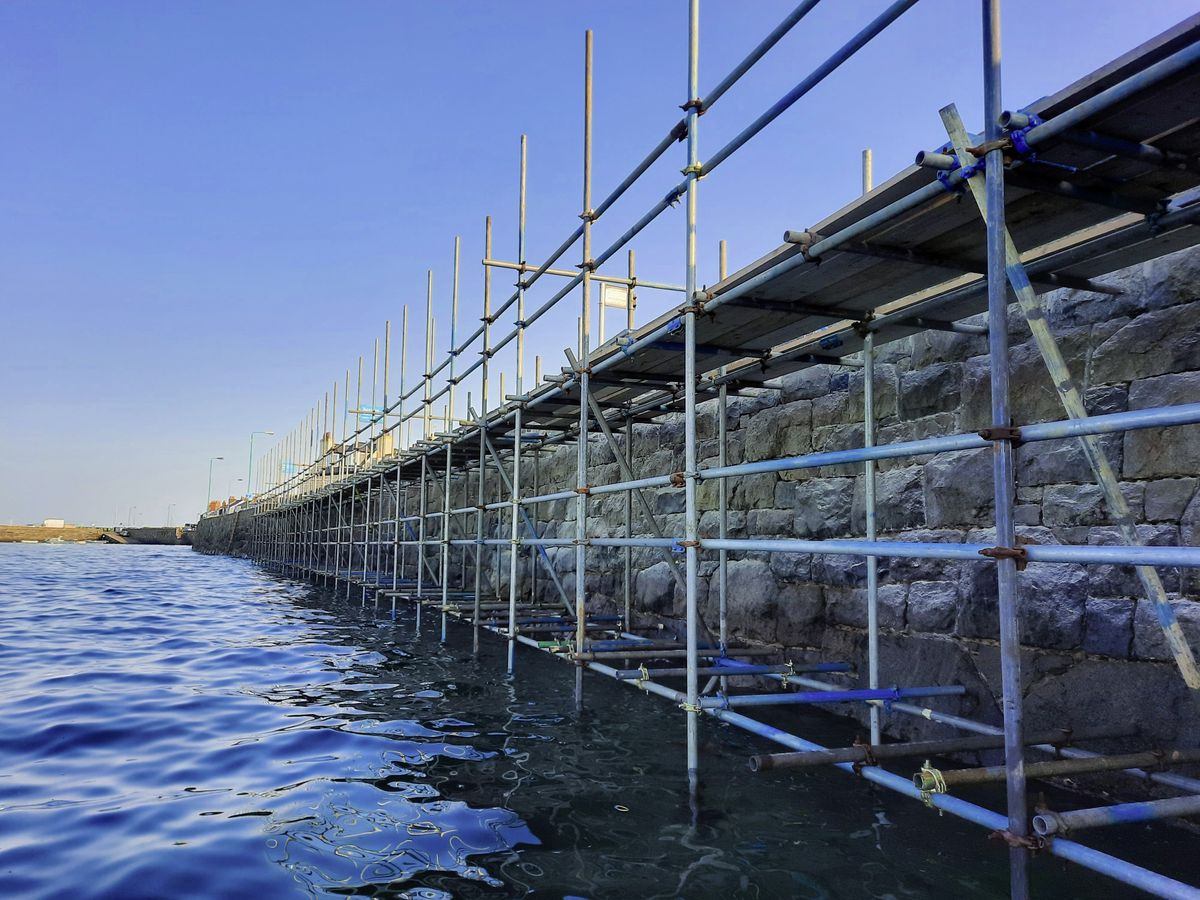 Scaffolding on the wall at the Longstore. Re-pointing work on the wall is nearing completion. (Picture by Peter Frankland, 29996992)