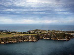 Alderney, by Peter Frankland. (29244831)