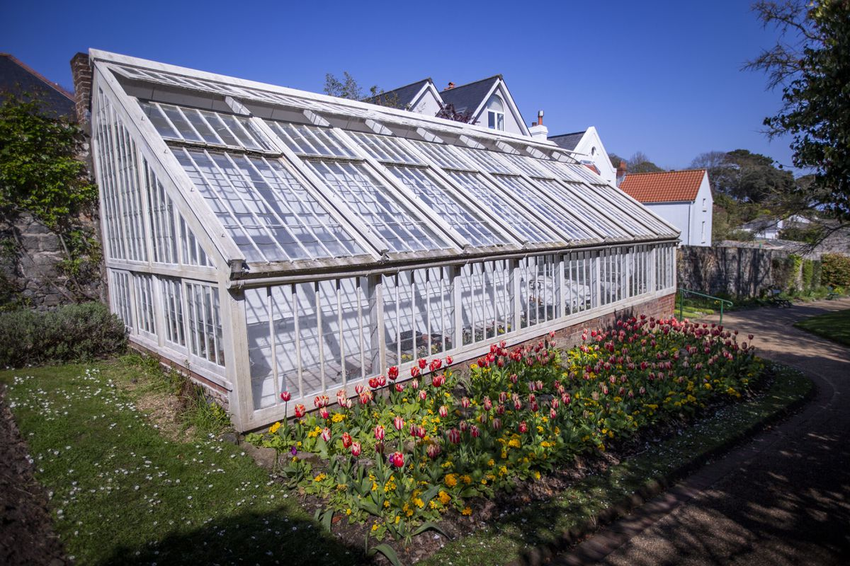 One of the two glasshouses at Candie Gardens which are in a state of disrepair. (Picture by Sophie Rabey, 29542509)