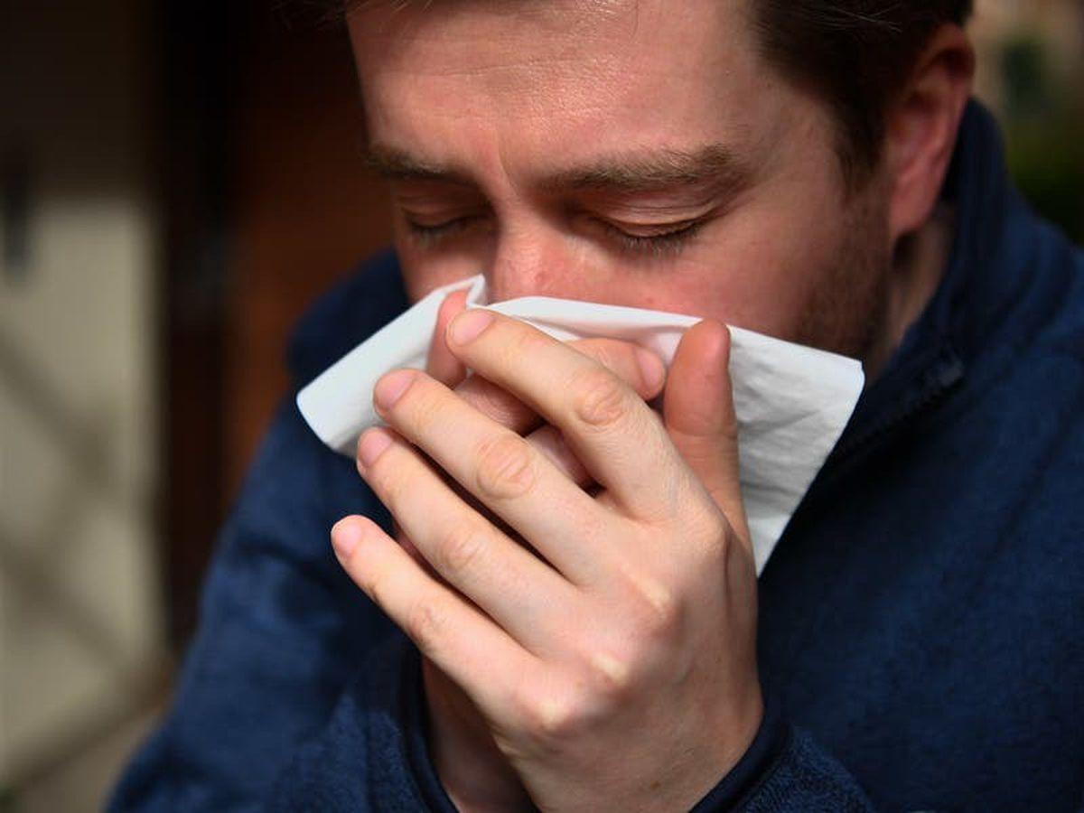 Rotten egg gas 'could guard against Alzheimer's disease'