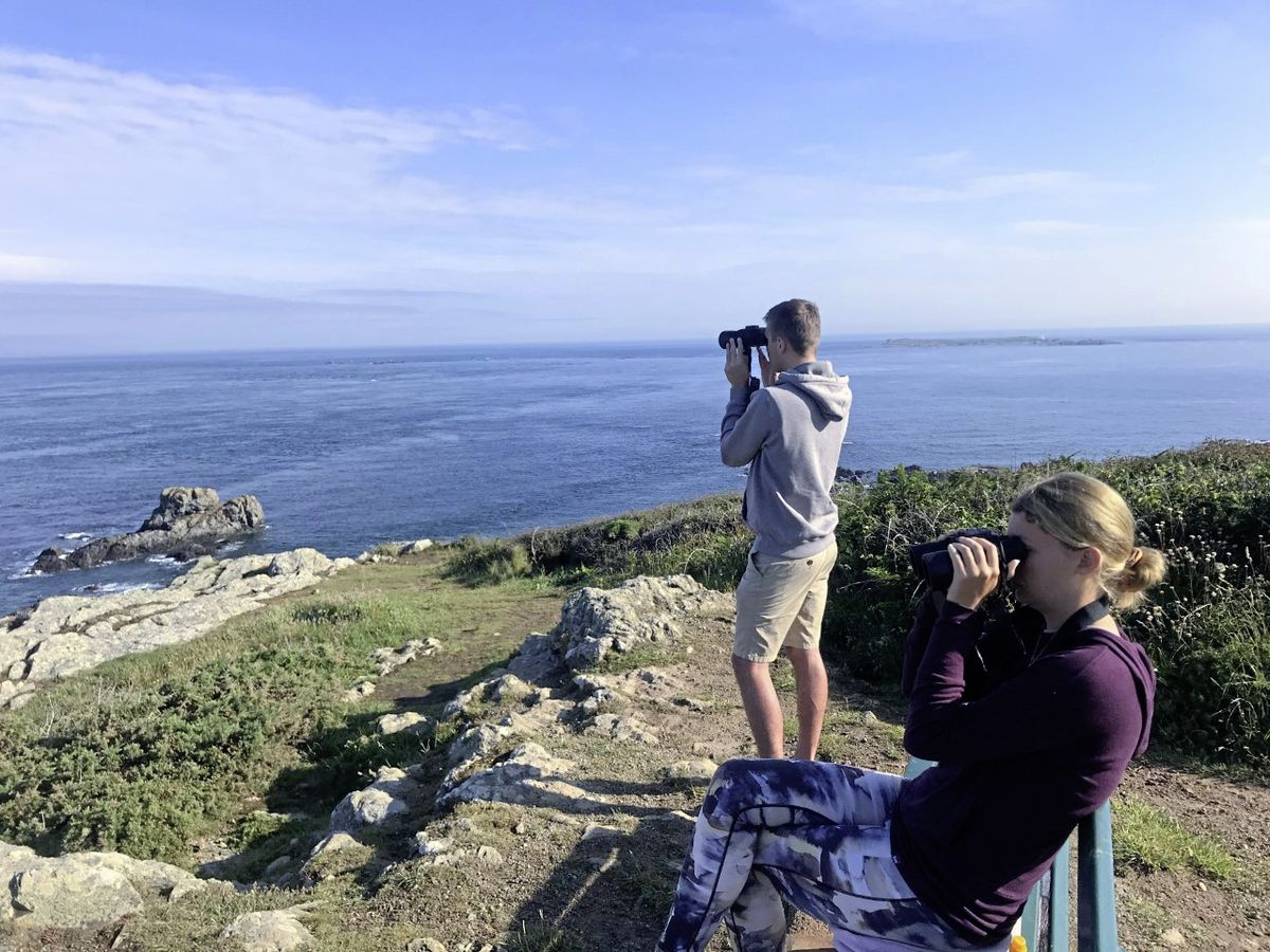 DolFin Project volunteers Imogen Lovell and Callum Hockey surveying. (Picture Supplied)