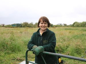 Guernsey Conservation Volunteers group coordinator Angela Salmon. (Picture by Adrian Miller, 28973368)