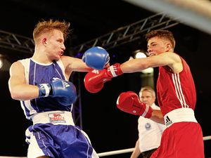 Going pro: Talented Martin McDonagh (red) has enjoyed a fantastic amateur career and will test local favourite Billy Le Poullain tomorrow.