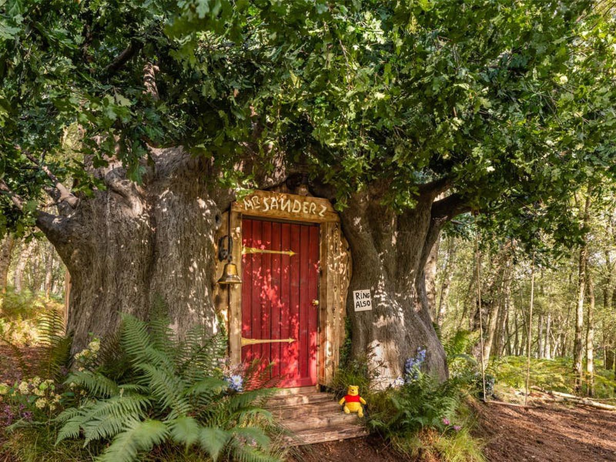 Winnie-the-Pooh 'bearbnb' comes to East Sussex to mark 95th anniversary