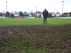 Picture By Peter Frankland. 24-11-16 Henry Davey at Blanch Pierre Lane football pitch. Birds have damaged part of the pitch.. (28847076)