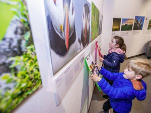 Brother and sister William, 4, and Olivia Davies, 7, took part in a quiz which called on them to identify animals from a tight crop on a picture of their eyes. They are in front of a photo of Olivia's favourite bird, a puffin. (Pictures by Sophie Rabey, 29442493)