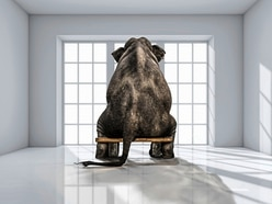 It's time to address the elephant in the room