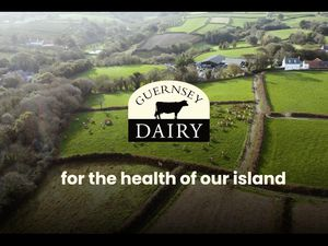 Screenshots from Guernsey Dairy's new campaign video.