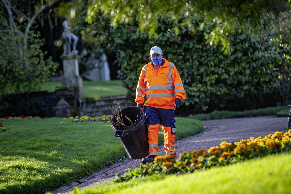 Peter de Garis is one of States Works' land management operatives. He is back to work in Candie Gardens. (Picture by Peter Frankland, 29267714)