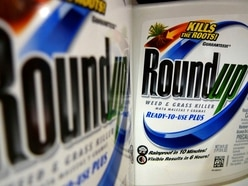 Call for 'cancer weed-killer' ban